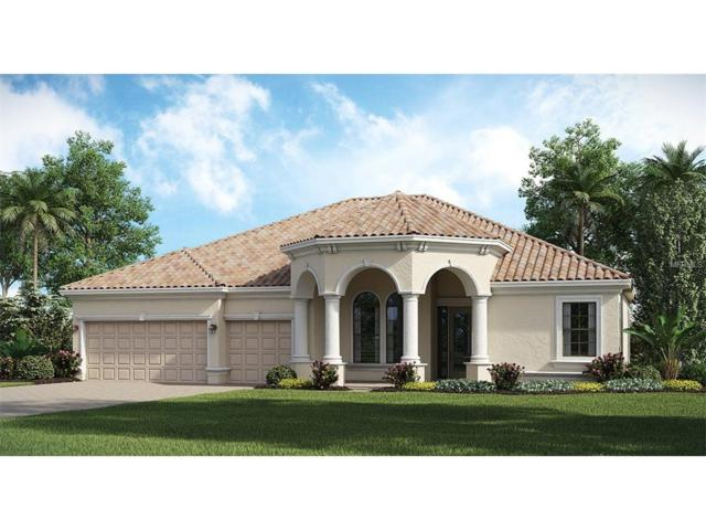 13333 Caravaggio Court, Venice, FL 34293 (MLS #A4191377) :: The Duncan Duo Team