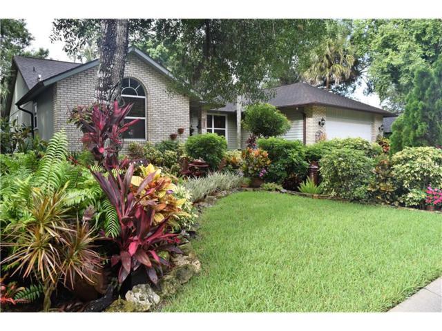 2681 Mapleloft Lane, Sarasota, FL 34232 (MLS #A4191928) :: KELLER WILLIAMS CLASSIC VI