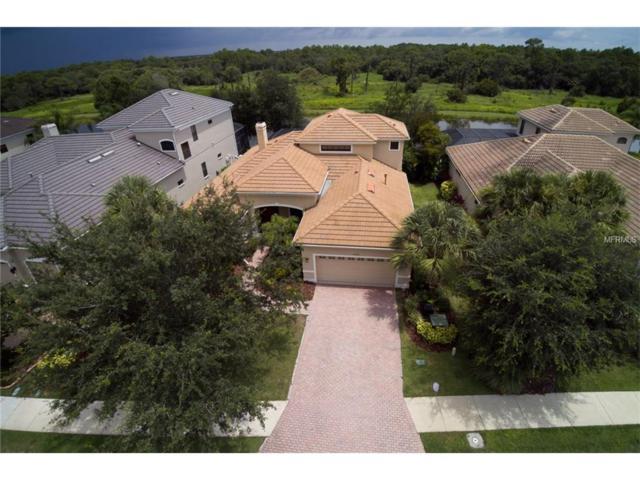 14540 Sundial Place, Lakewood Ranch, FL 34202 (MLS #A4192095) :: KELLER WILLIAMS CLASSIC VI
