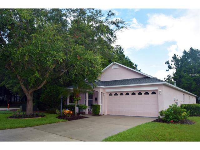 12301 Wood Sage Terrace, Lakewood Ranch, FL 34202 (MLS #A4192200) :: KELLER WILLIAMS CLASSIC VI