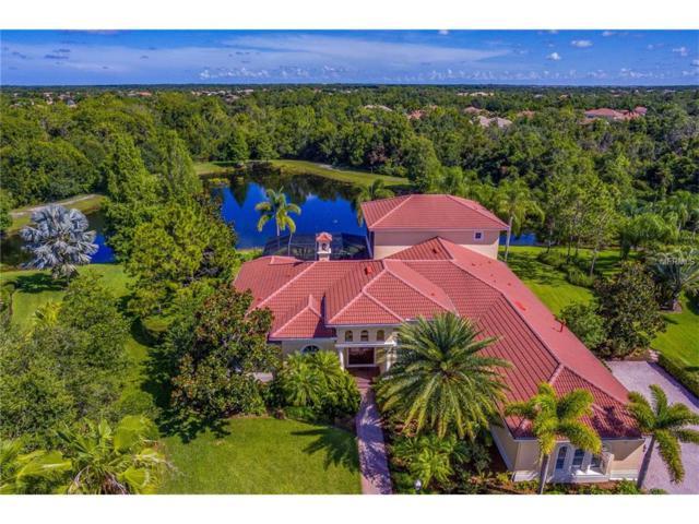 13231 Palmers Creek Terrace, Lakewood Ranch, FL 34202 (MLS #A4192202) :: KELLER WILLIAMS CLASSIC VI