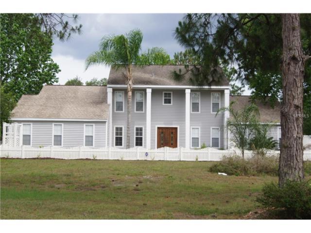 27702 Raven Brook Road, Wesley Chapel, FL 33544 (MLS #A4193005) :: The Duncan Duo & Associates