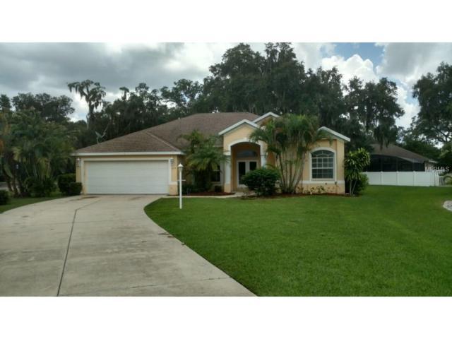 5919 32ND Street E, Ellenton, FL 34222 (MLS #A4193251) :: Medway Realty