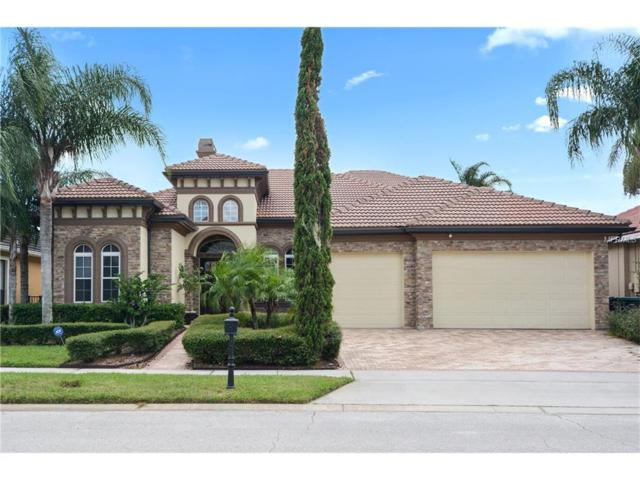 13412 Heswall Run, Orlando, FL 32832 (MLS #A4193255) :: Sosa | Philbeck Real Estate Group
