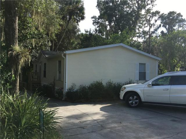 4152 Alafia Boulevard, Brandon, FL 33511 (MLS #A4193823) :: The Duncan Duo Team
