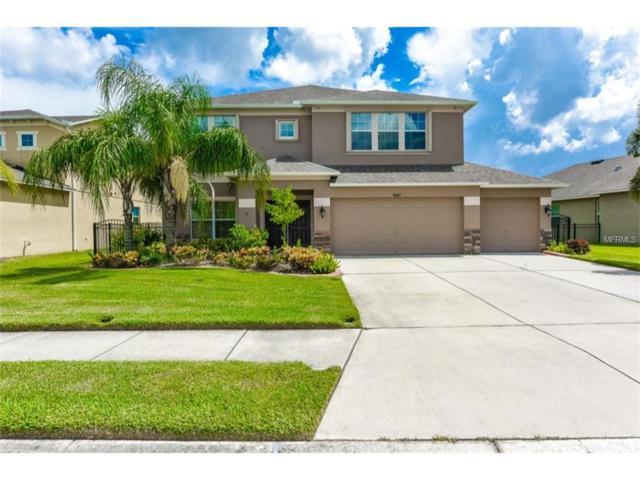 9007 41ST Street E, Parrish, FL 34219 (MLS #A4194165) :: Team Pepka
