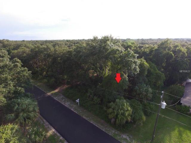 Rada Lane, North Port, FL 34288 (MLS #A4194550) :: Medway Realty
