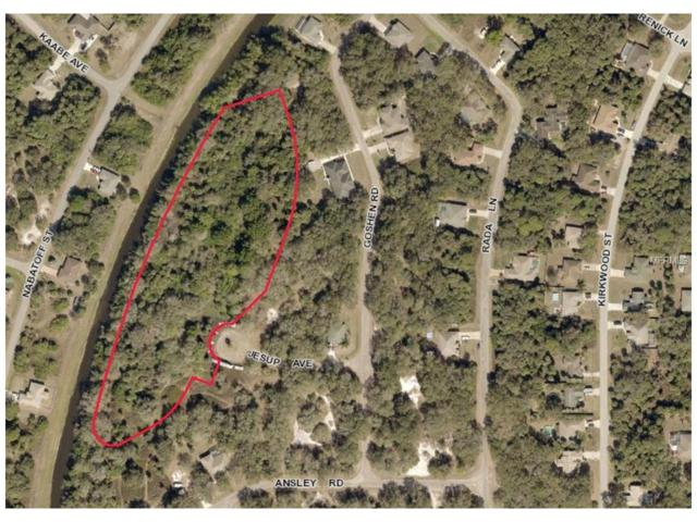 Jesup Avenue, North Port, FL 34288 (MLS #A4194852) :: Griffin Group