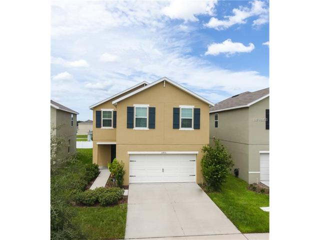 10436 Whispering Hammock Drive, Riverview, FL 33578 (MLS #A4194856) :: Griffin Group