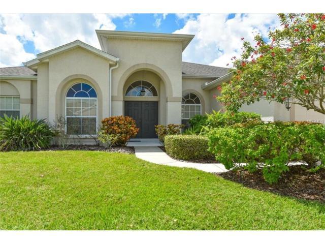 7785 Castleisland Drive, Sarasota, FL 34240 (MLS #A4195836) :: Medway Realty