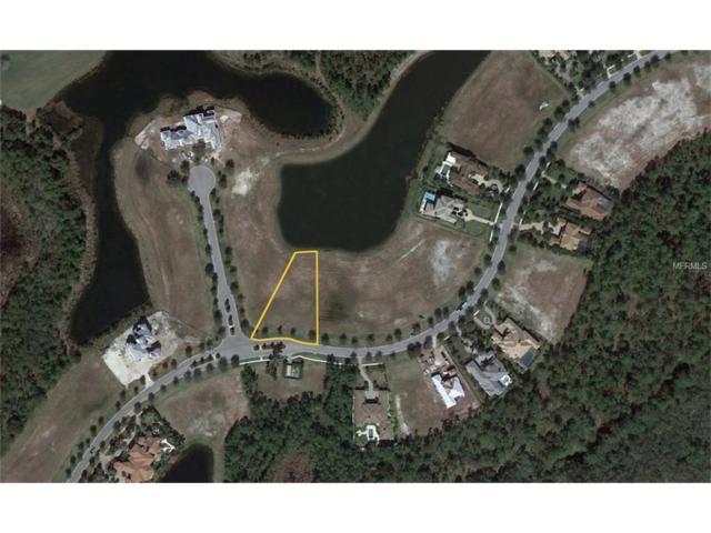 19405 Ganton Avenue, Bradenton, FL 34202 (MLS #A4196043) :: Godwin Realty Group