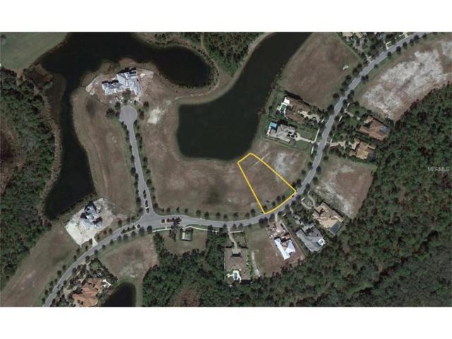 19417 Ganton Avenue, Bradenton, FL 34202 (MLS #A4196048) :: Godwin Realty Group