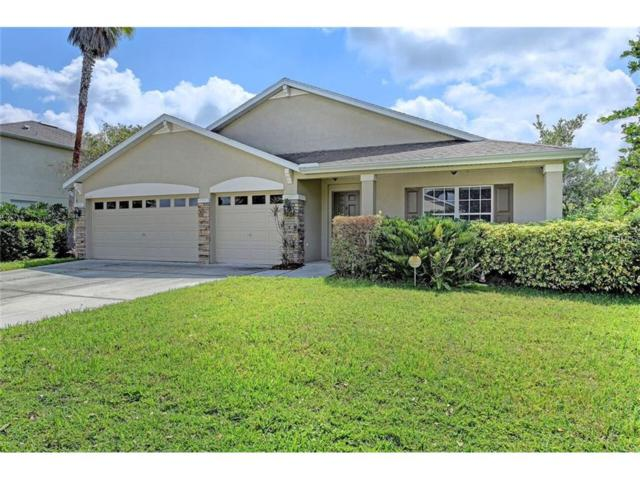 4016 Kingsfield Drive, Parrish, FL 34219 (MLS #A4196052) :: Medway Realty