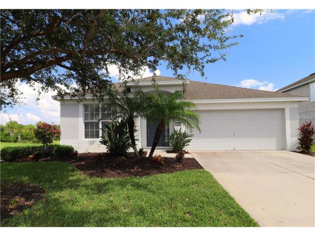 5920 100TH Avenue E, Parrish, FL 34219 (MLS #A4196662) :: NewHomePrograms.com LLC