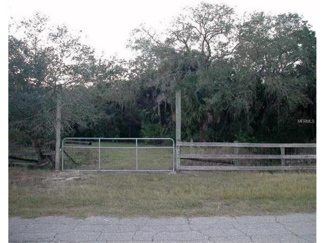 14090 Mossy Hammock Lane, Myakka City, FL 34251 (MLS #A4196732) :: TeamWorks WorldWide