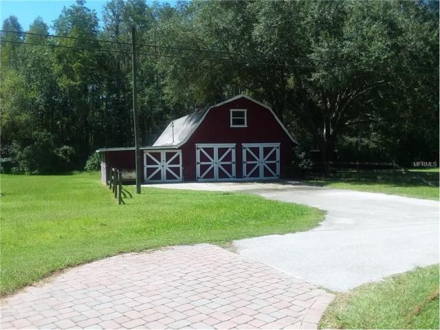 Ranch Road, Tarpon Springs, FL 34688 (MLS #A4196901) :: TeamWorks WorldWide