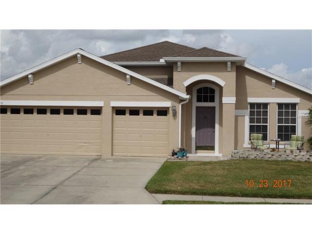 12026 Wallingford Way, Parrish, FL 34219 (MLS #A4198774) :: Team Pepka