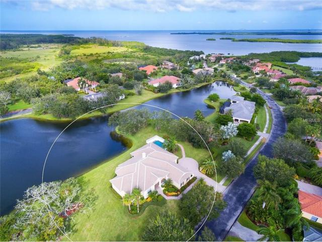 1735 Amberwynd Circle, Palmetto, FL 34221 (MLS #A4198814) :: Medway Realty