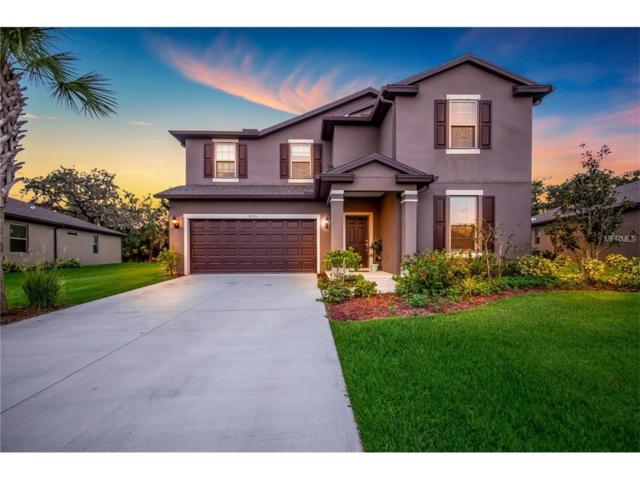 9705 58TH Street E, Parrish, FL 34219 (MLS #A4198940) :: TeamWorks WorldWide