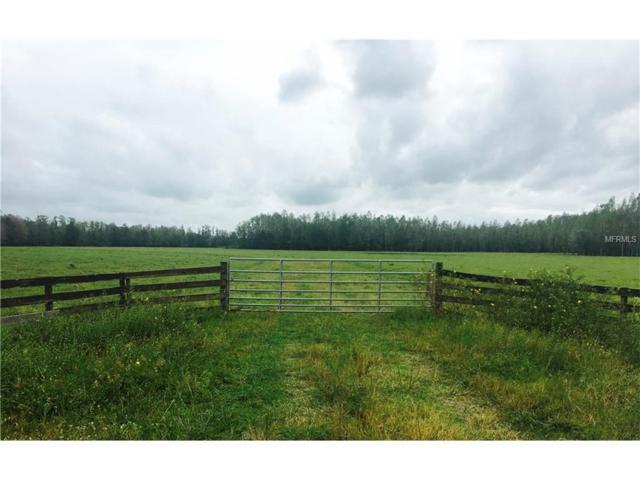 Moore Road, Lakeland, FL 33809 (MLS #A4198996) :: Premium Properties Real Estate Services
