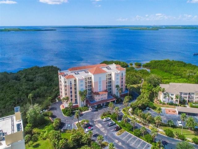 2715 Terra Ceia Bay Boulevard #206, Palmetto, FL 34221 (MLS #A4199008) :: Medway Realty
