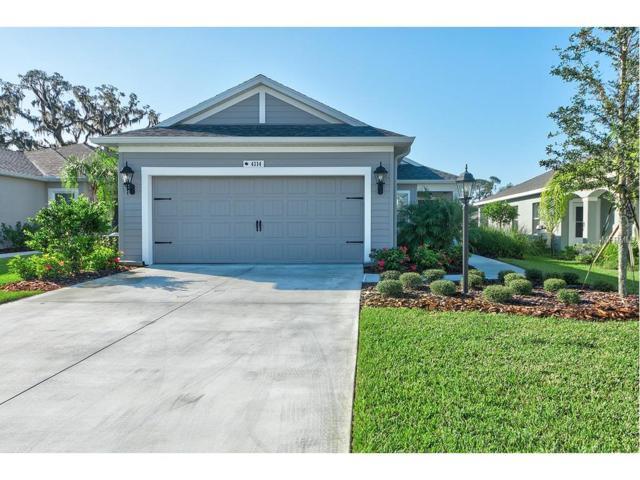 4114 Deep Creek Terrace, Parrish, FL 34219 (MLS #A4199033) :: Team Pepka