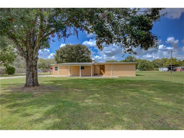 5107 Fort Hamer Road, Parrish, FL 34219 (MLS #A4199080) :: TeamWorks WorldWide