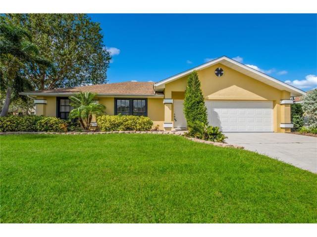2905 92ND Avenue E, Parrish, FL 34219 (MLS #A4199154) :: Team Pepka