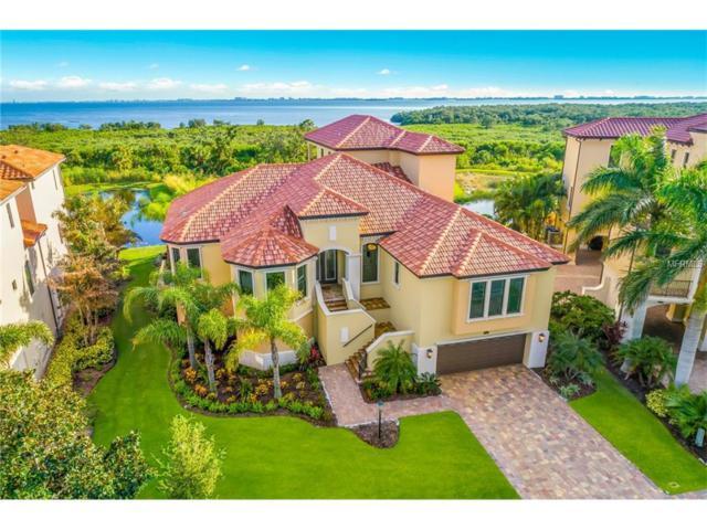 5506 Inspiration Terrace, Bradenton, FL 34210 (MLS #A4199224) :: TeamWorks WorldWide
