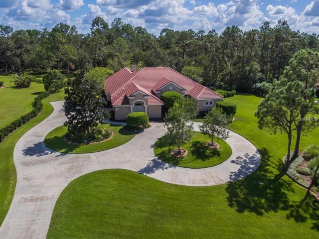 21808 Deer Pointe Crossing, Bradenton, FL 34202 (MLS #A4199338) :: Team Pepka