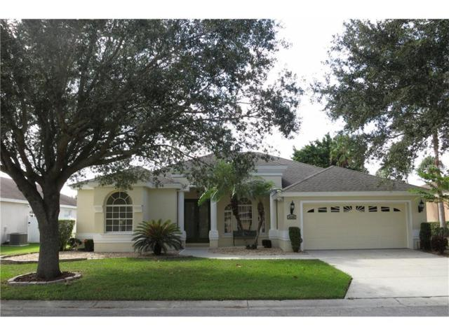 6290 Rock Creek Circle, Ellenton, FL 34222 (MLS #A4199383) :: Medway Realty