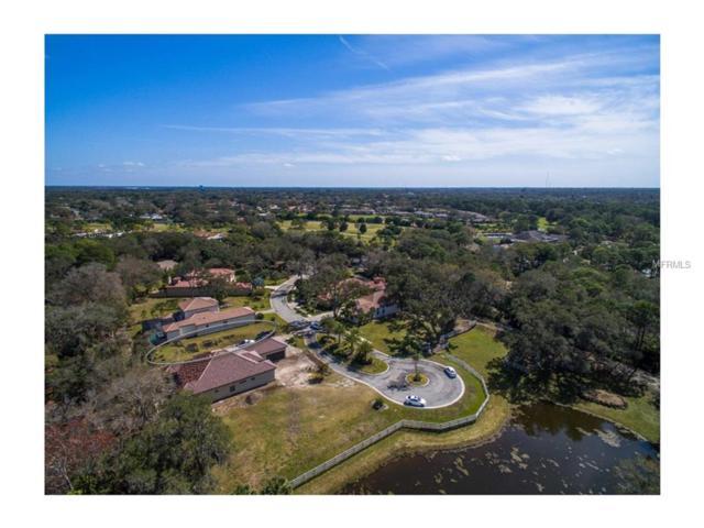 3532 Trebor Lane, Sarasota, FL 34235 (MLS #A4199514) :: Griffin Group