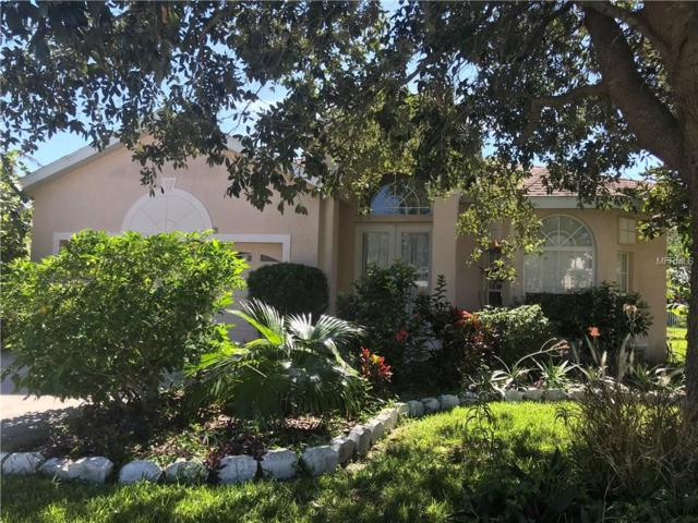 6355 Rock Creek Circle, Ellenton, FL 34222 (MLS #A4200755) :: Medway Realty