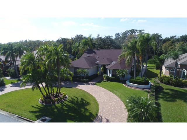2966 Wilderness Boulevard E, Parrish, FL 34219 (MLS #A4201366) :: Medway Realty
