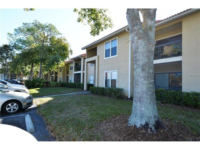 4041 Crockers Lake Boulevard #13, Sarasota, FL 34238 (MLS #A4201514) :: RealTeam Realty