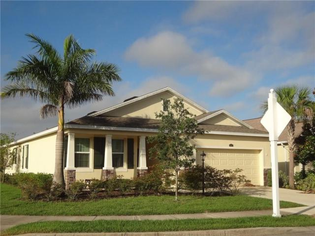 15622 Butterfish Place, Lakewood Ranch, FL 34202 (MLS #A4201644) :: McConnell and Associates
