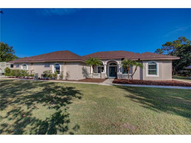 20605 63RD Avenue E, Bradenton, FL 34211 (MLS #A4202034) :: Griffin Group
