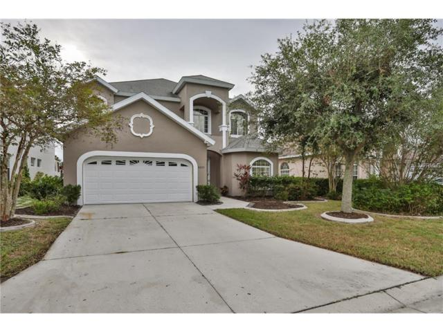 6223 Laurel Creek Trail, Ellenton, FL 34222 (MLS #A4202357) :: Medway Realty