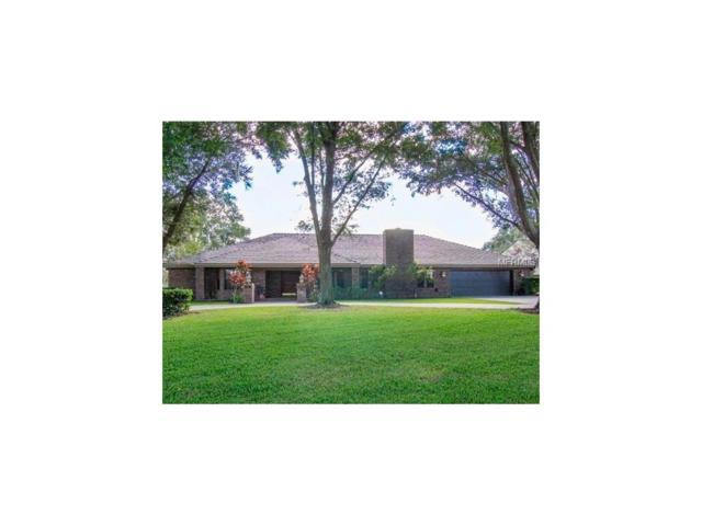 610 Warren Road, Lutz, FL 33548 (MLS #A4202419) :: Griffin Group