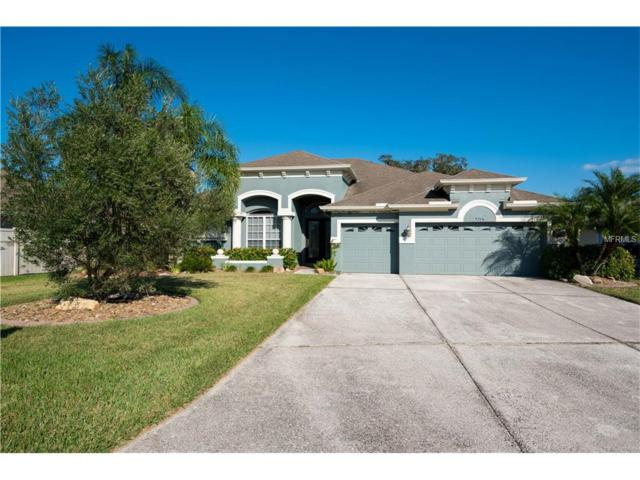 9218 63RD Court E, Parrish, FL 34219 (MLS #A4202470) :: Medway Realty