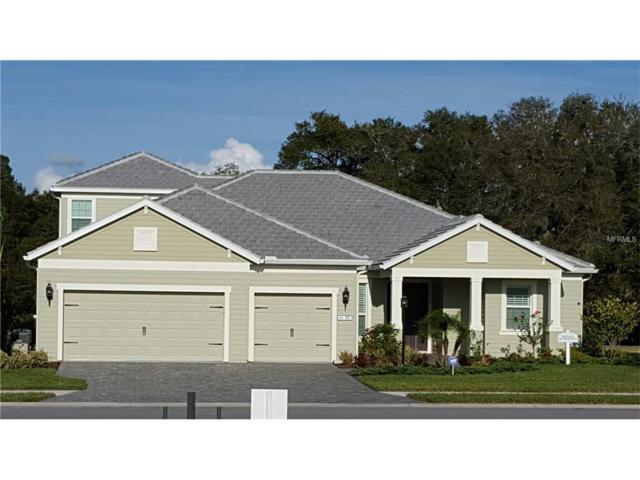 1068 River Wind Circle, Bradenton, FL 34212 (MLS #A4202517) :: NewHomePrograms.com LLC