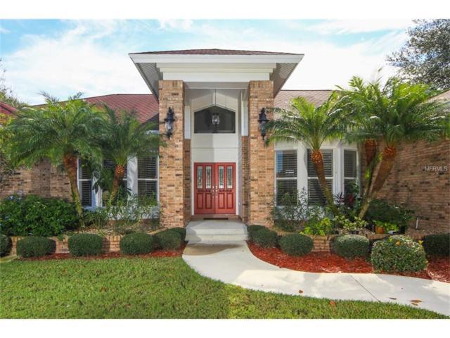 2945 Wilderness Boulevard E, Parrish, FL 34219 (MLS #A4202535) :: TeamWorks WorldWide