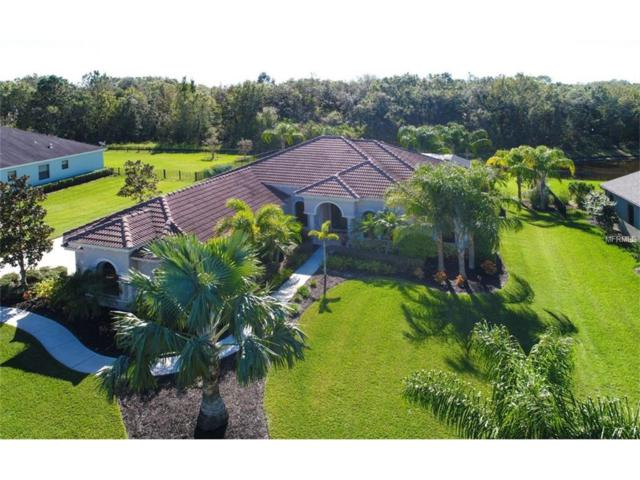 15429 Mulholland Road, Parrish, FL 34219 (MLS #A4202664) :: Medway Realty