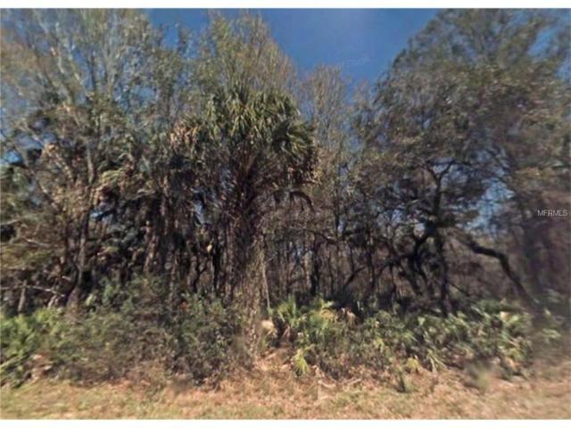 7976 N Flame Vine Way, Crystal River, FL 34428 (MLS #A4203602) :: The Duncan Duo Team