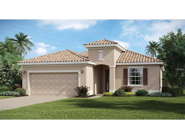 12400 Cinqueterre Lane, Venice, FL 34293 (MLS #A4203967) :: The Duncan Duo Team