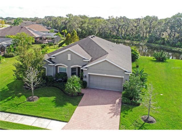 7303 55TH Street E, Ellenton, FL 34222 (MLS #A4204205) :: Medway Realty