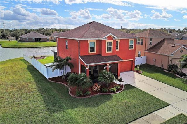 11233 78TH Lane E, Parrish, FL 34219 (MLS #A4204481) :: Medway Realty