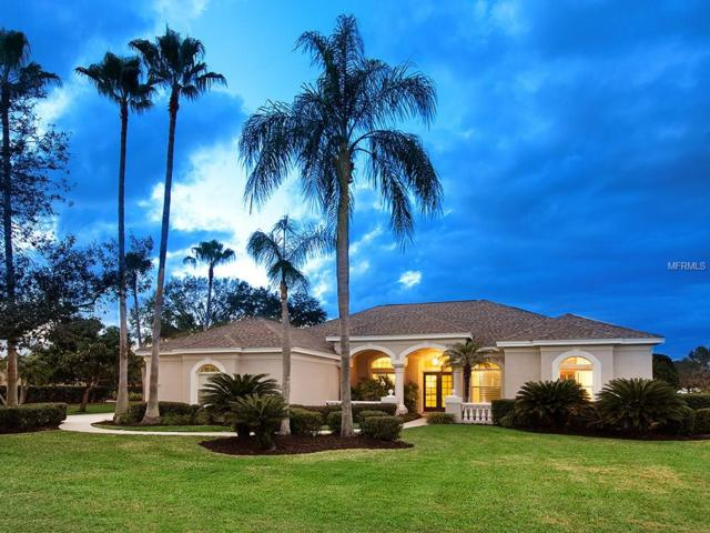 10156 Cherry Hills Avenue Circle, Bradenton, FL 34202 (MLS #A4204511) :: The Lockhart Team