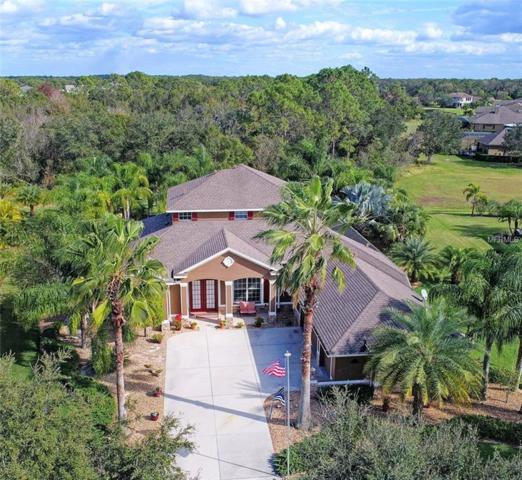 2602 Twin Rivers Trail, Parrish, FL 34219 (MLS #A4204578) :: Medway Realty