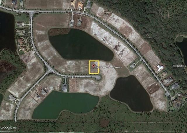 20923 Parkstone Terrace, Lakewood Ranch, FL 34202 (MLS #A4205762) :: Delgado Home Team at Keller Williams